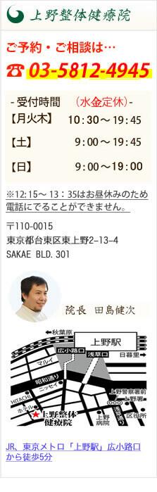 上野・秋葉原・東京及び首都圏周辺のうつ病・自律神経失調症専門の整体なら|上野整体健療院
